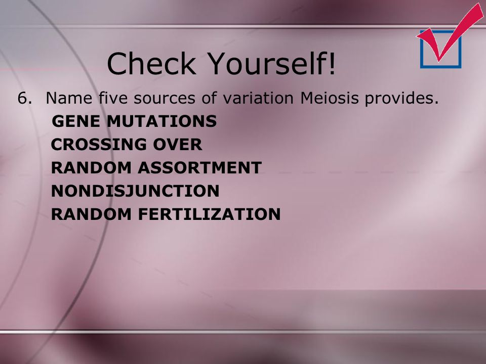 Check Yourself! Name five sources of variation Meiosis provides.
