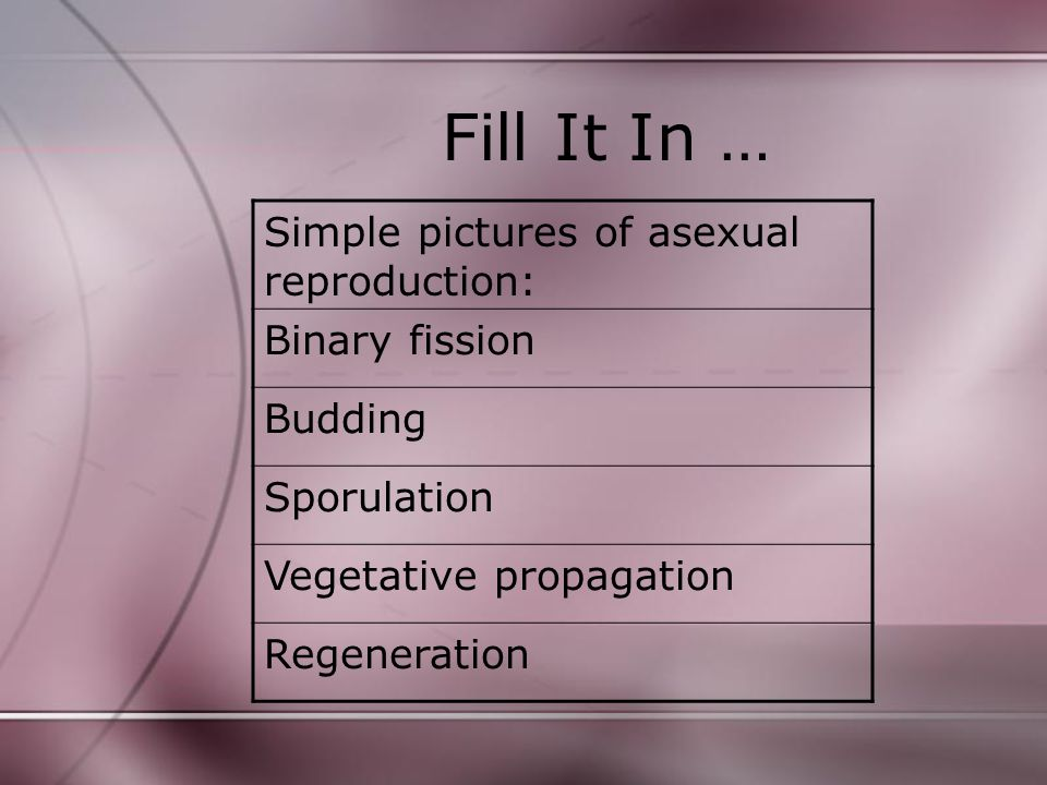 Fill It In … Simple pictures of asexual reproduction: Binary fission