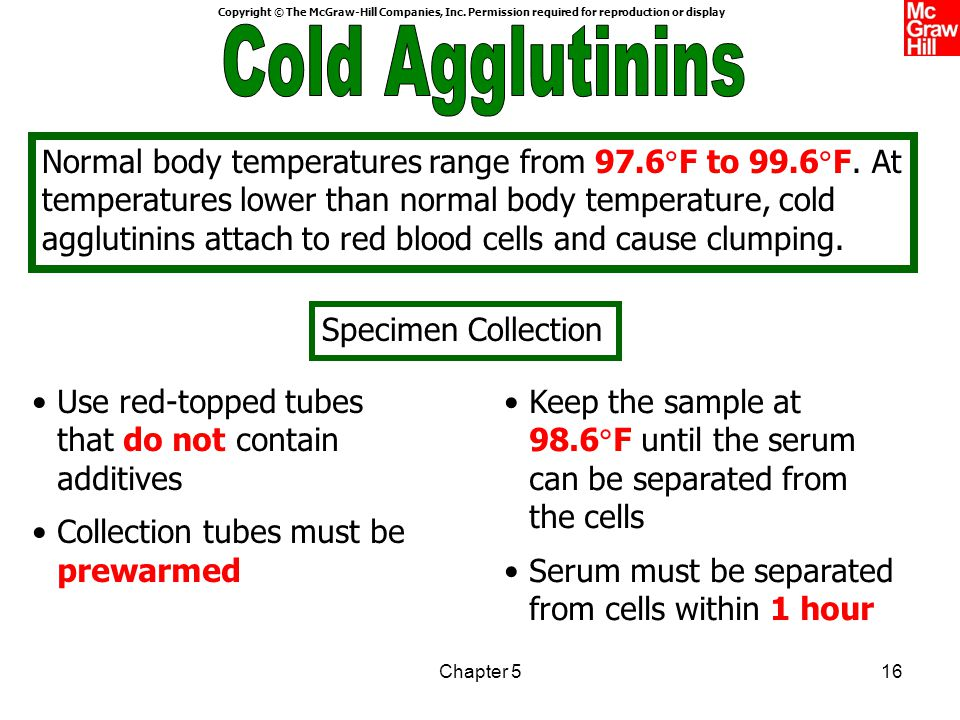 Cold Agglutinins Part 2 Cold Agglutinins