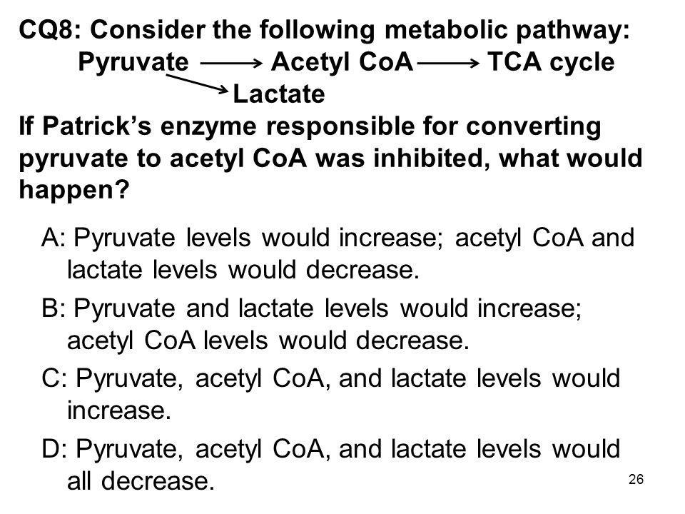CQ8: Consider the following metabolic pathway: Pyruvate Acetyl CoA TCA cycle Lactate If Patrick's enzyme responsible for converting pyruvate to acetyl CoA was inhibited, what would happen