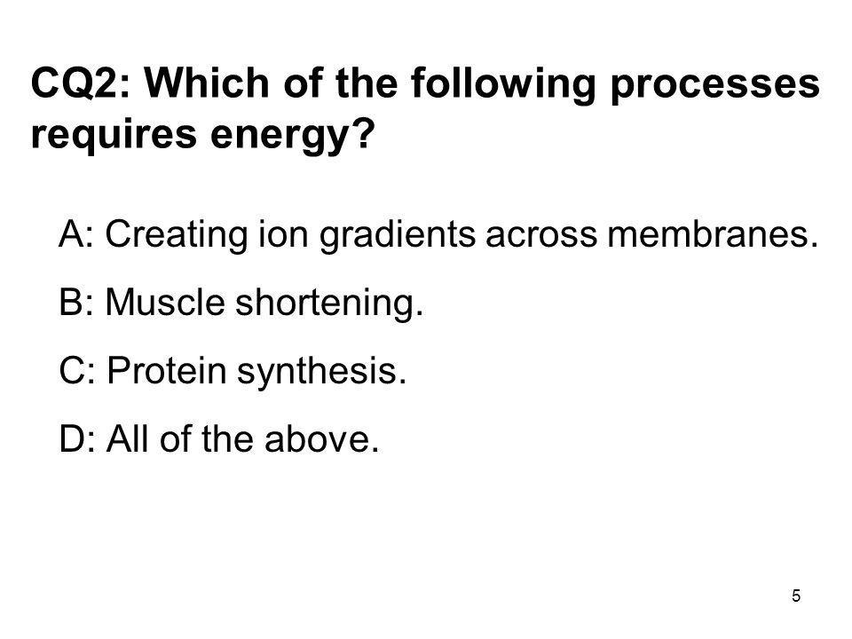 CQ2: Which of the following processes requires energy