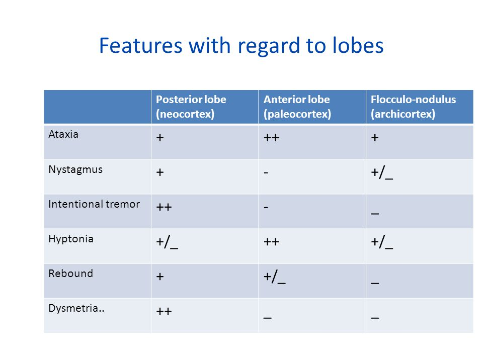 Features with regard to lobes