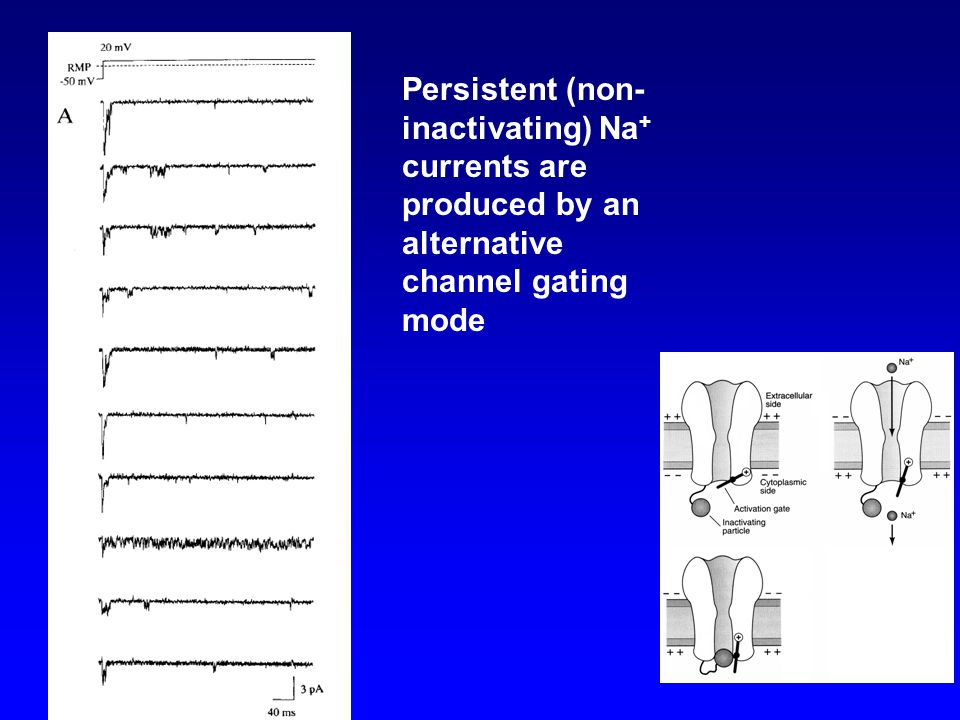 Persistent (non-inactivating) Na+ currents are produced by an alternative channel gating mode
