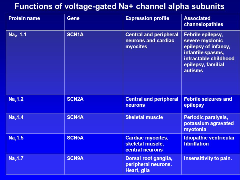 Functions of voltage-gated Na+ channel alpha subunits