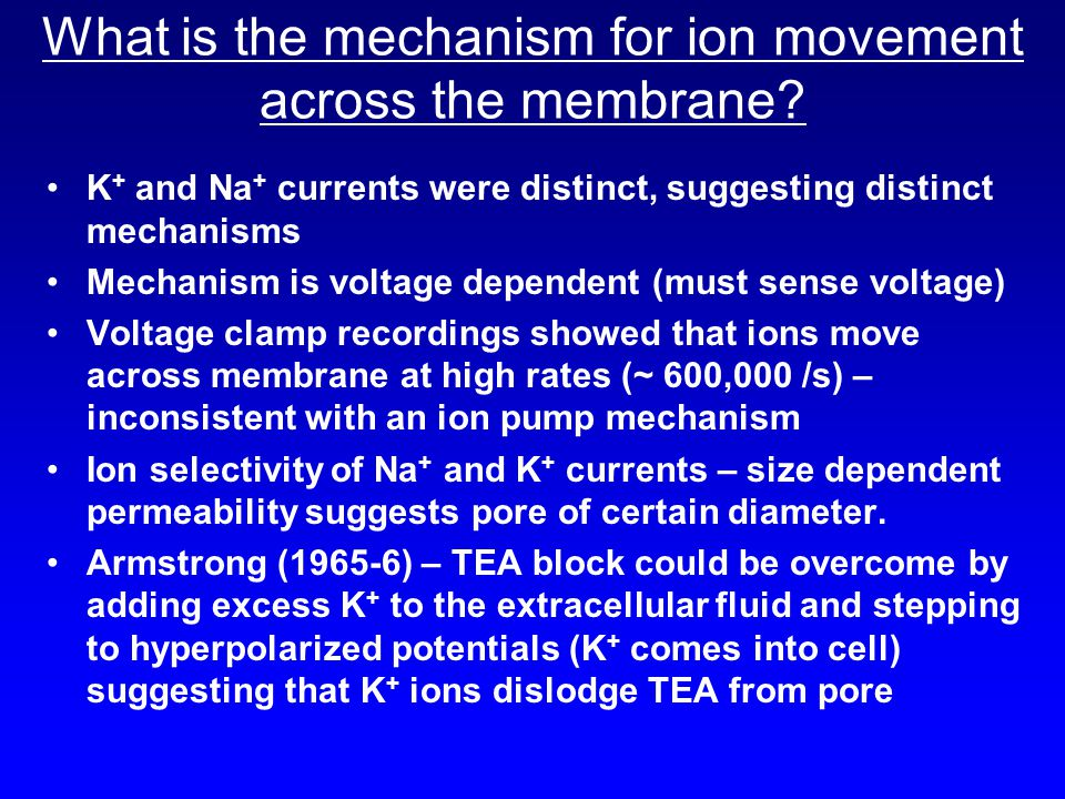What is the mechanism for ion movement across the membrane