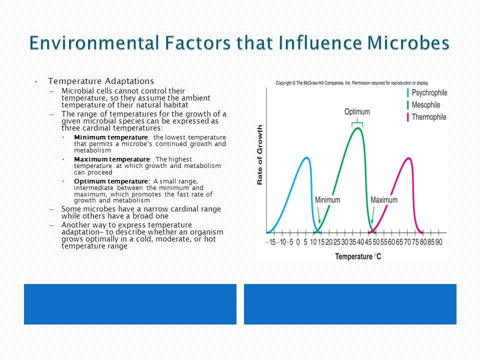 Environmental Factors that Influence Microbes