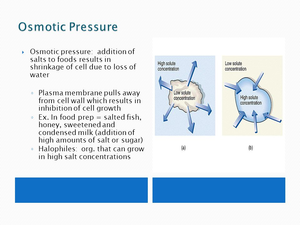 Osmotic Pressure Osmotic pressure: addition of salts to foods results in shrinkage of cell due to loss of water.
