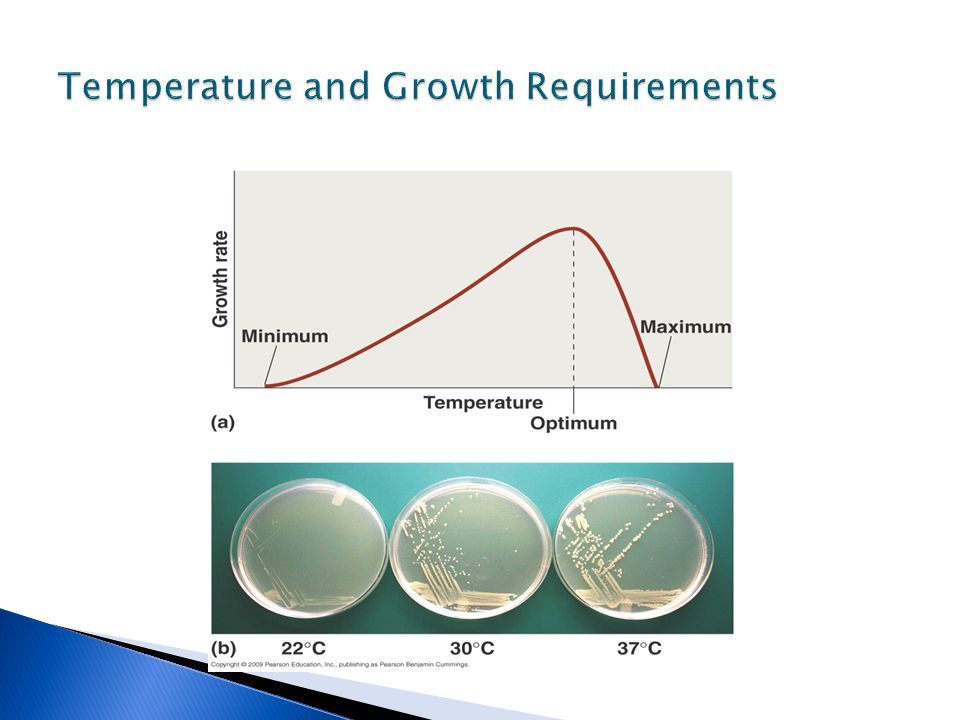 Temperature and Growth Requirements