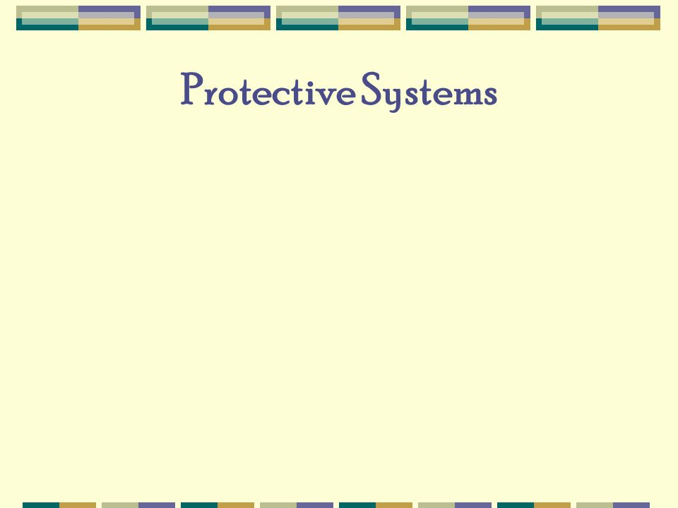 Protective Systems
