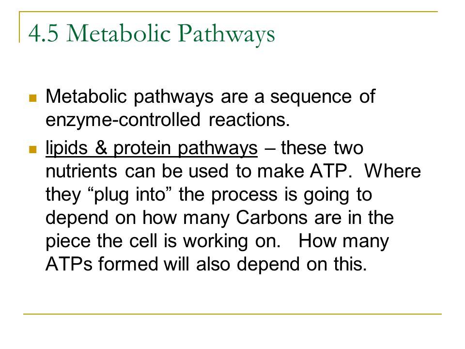 4.5 Metabolic Pathways Metabolic pathways are a sequence of enzyme-controlled reactions.
