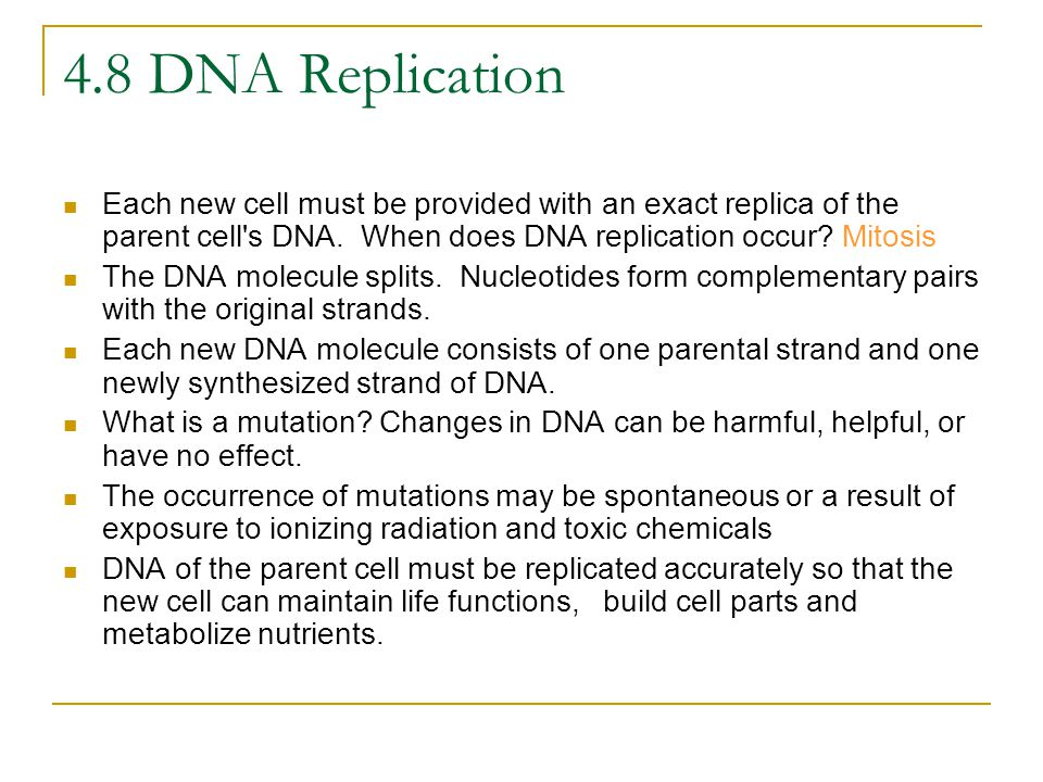 4.8 DNA Replication Each new cell must be provided with an exact replica of the parent cell s DNA. When does DNA replication occur Mitosis.