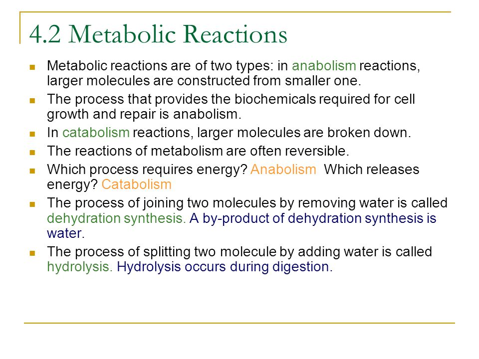 4.2 Metabolic Reactions Metabolic reactions are of two types: in anabolism reactions, larger molecules are constructed from smaller one.