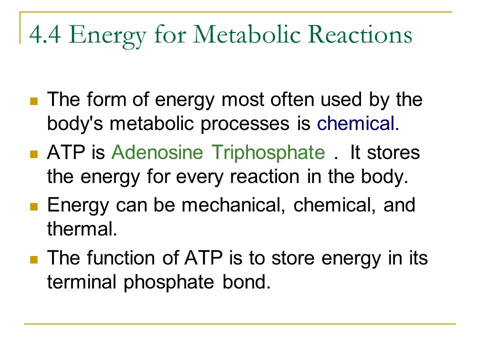 4.4 Energy for Metabolic Reactions