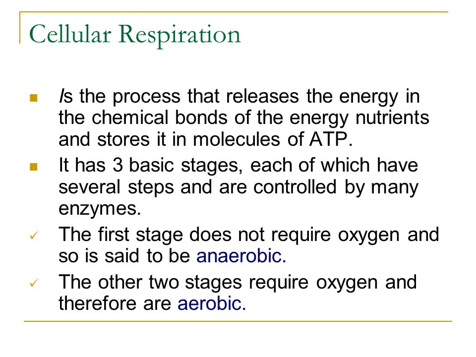 Cellular Respiration Is the process that releases the energy in the chemical bonds of the energy nutrients and stores it in molecules of ATP.