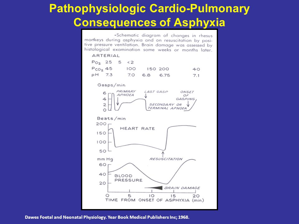 Pathophysiologic Cardio-Pulmonary Consequences of Asphyxia