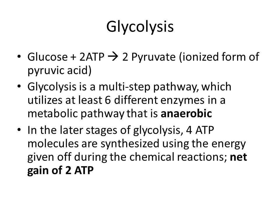Glycolysis Glucose + 2ATP  2 Pyruvate (ionized form of pyruvic acid)