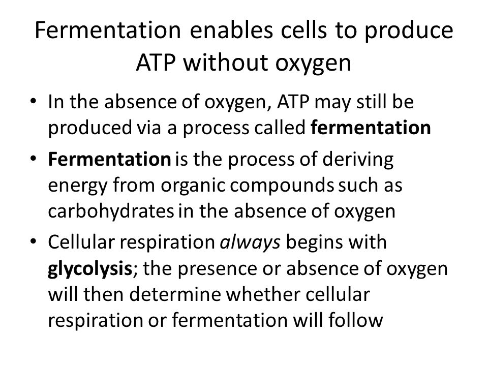 Fermentation enables cells to produce ATP without oxygen