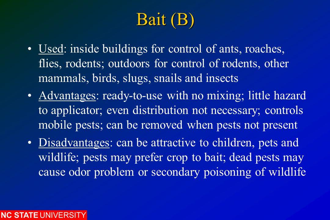 Bait (B)