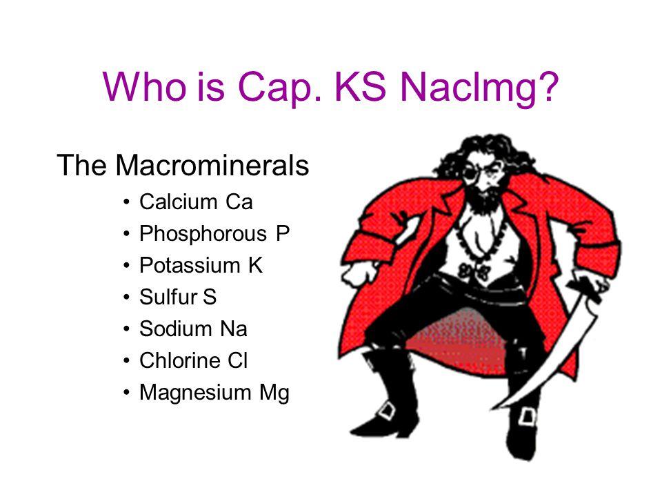 Who is Cap. KS Naclmg The Macrominerals Calcium Ca Phosphorous P