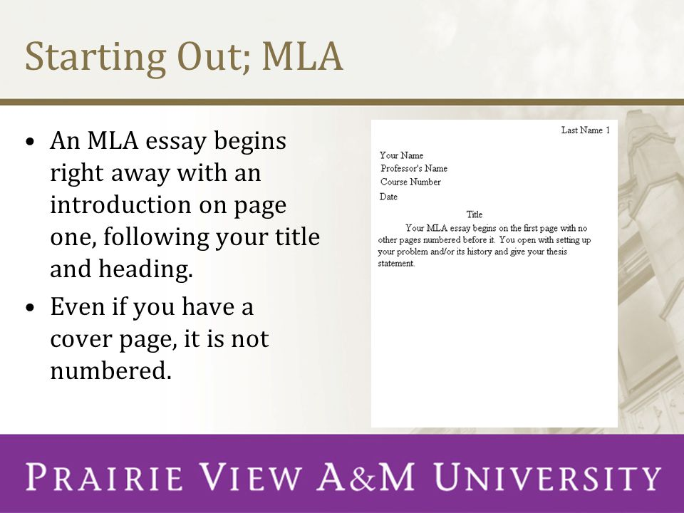 review essay on pierre bourdieu Tips on Writing an Essay MLA Style