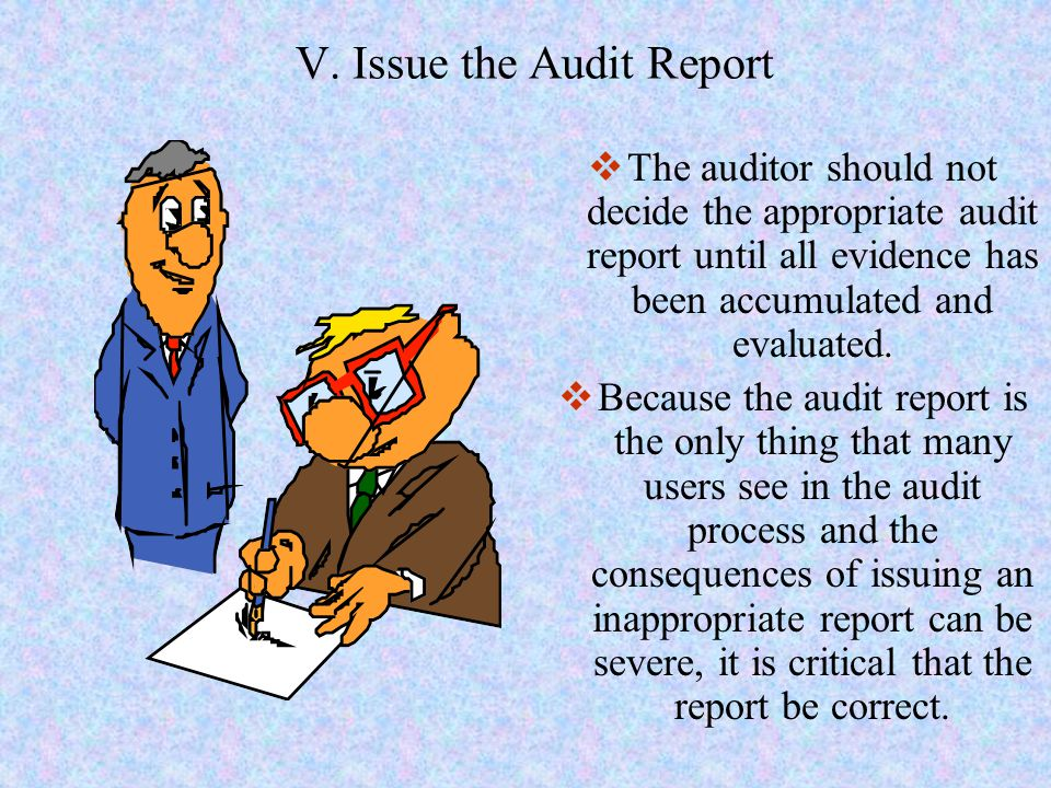 V. Issue the Audit Report