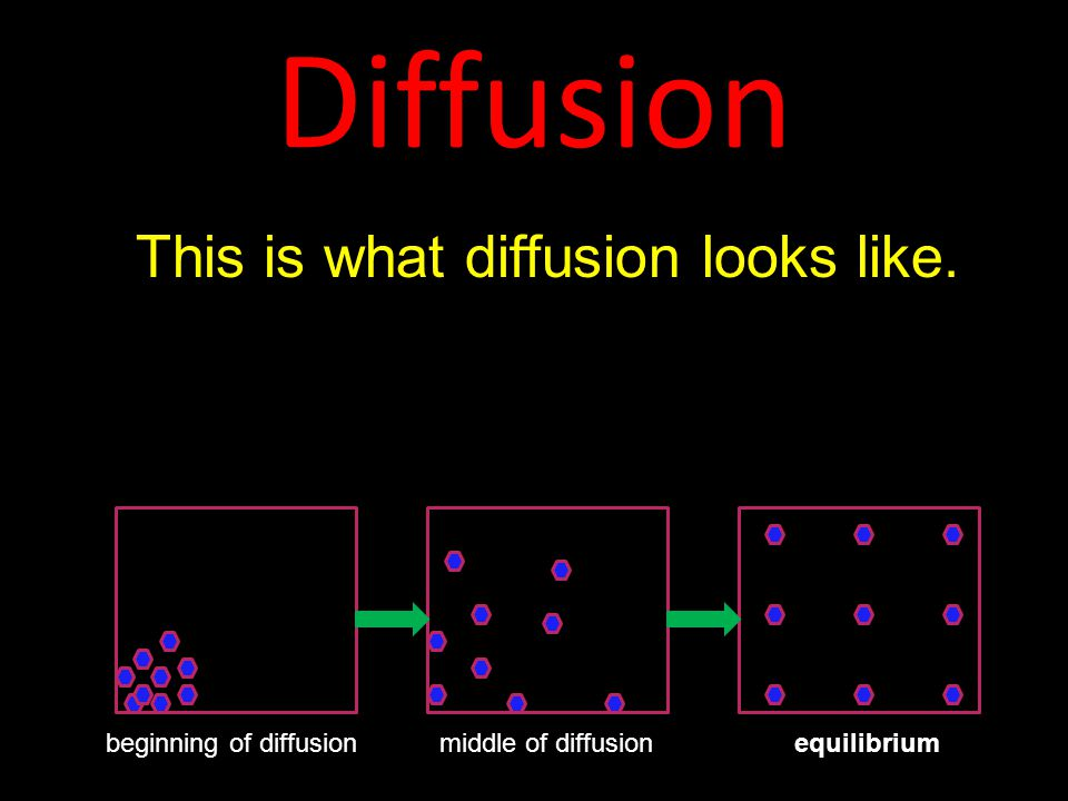 Diffusion This is what diffusion looks like.