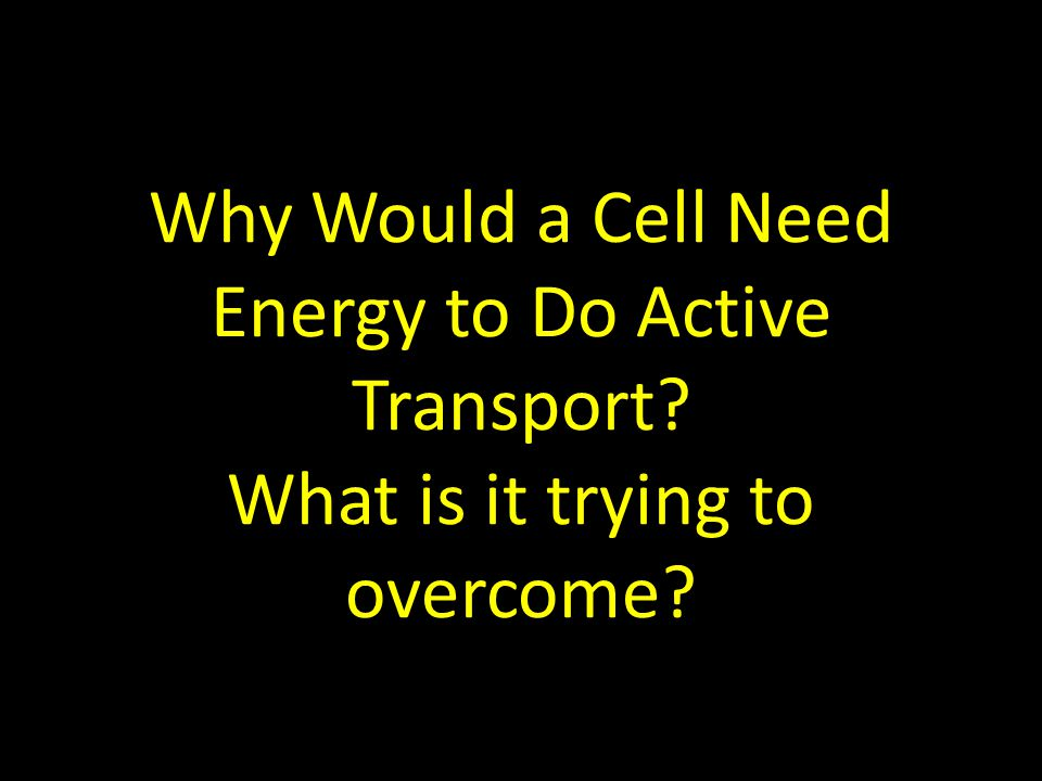 Why Would a Cell Need Energy to Do Active Transport