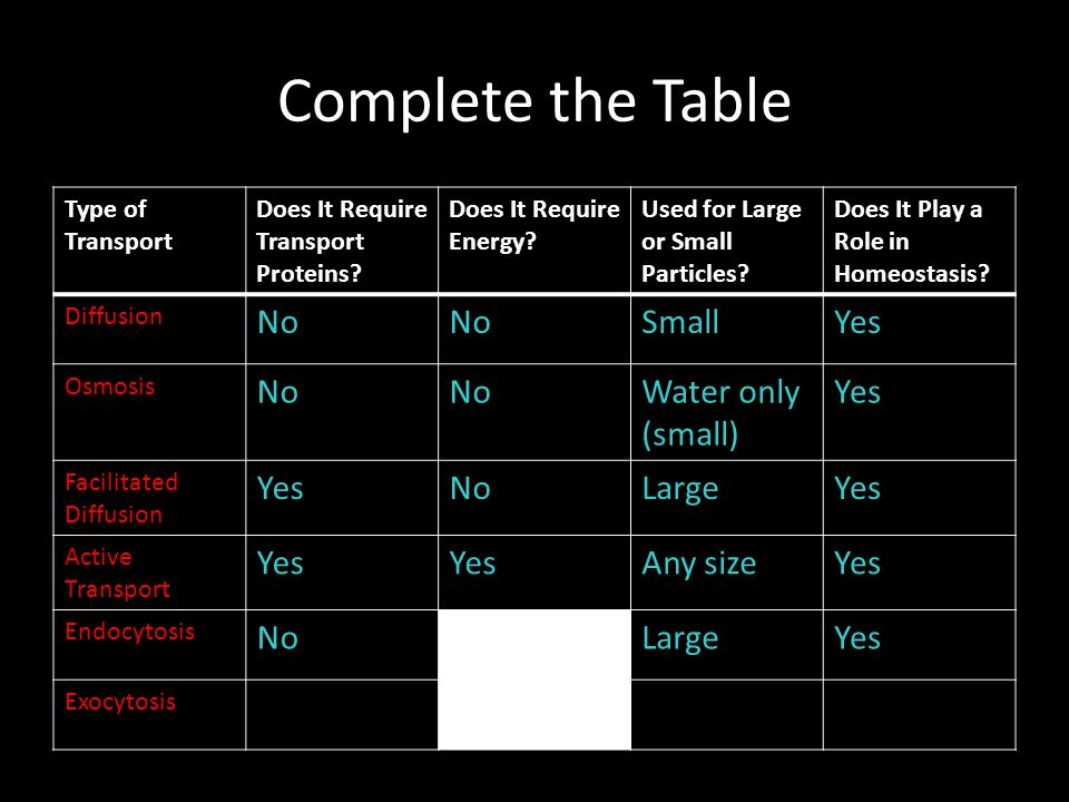 Complete the Table No Small Yes Water only (small) Large Any size