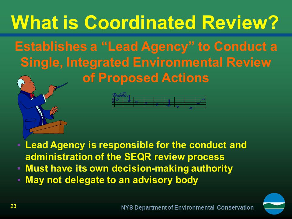 What is Coordinated Review