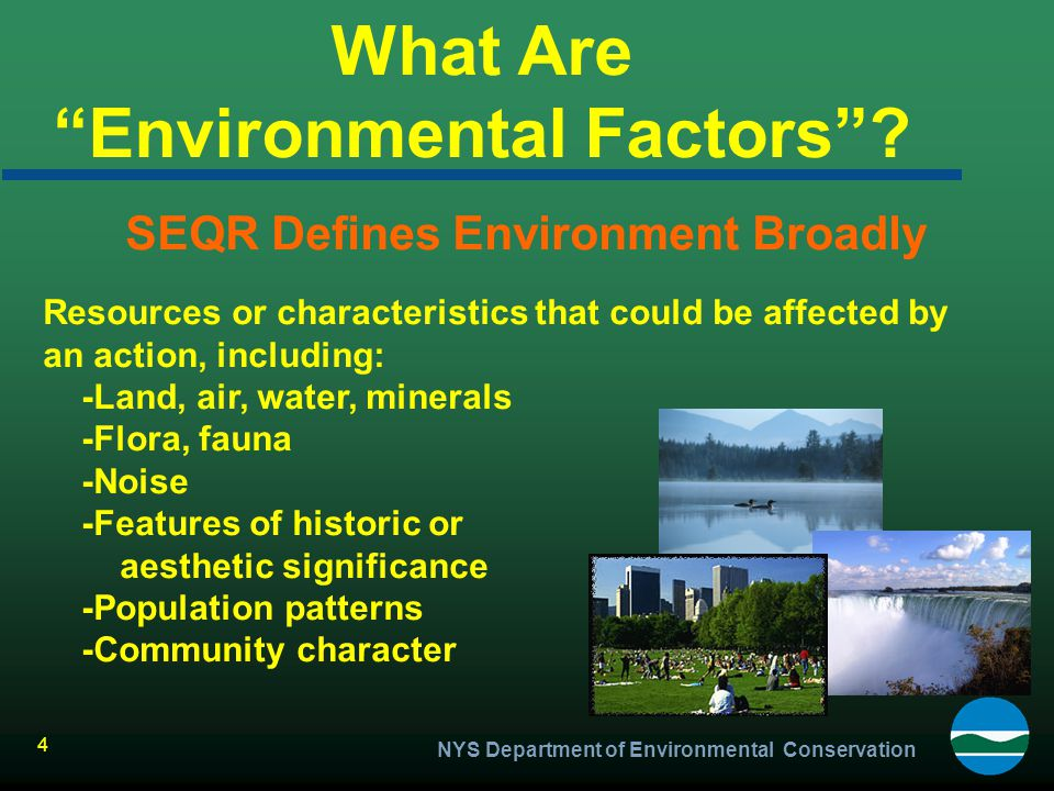 What Are Environmental Factors