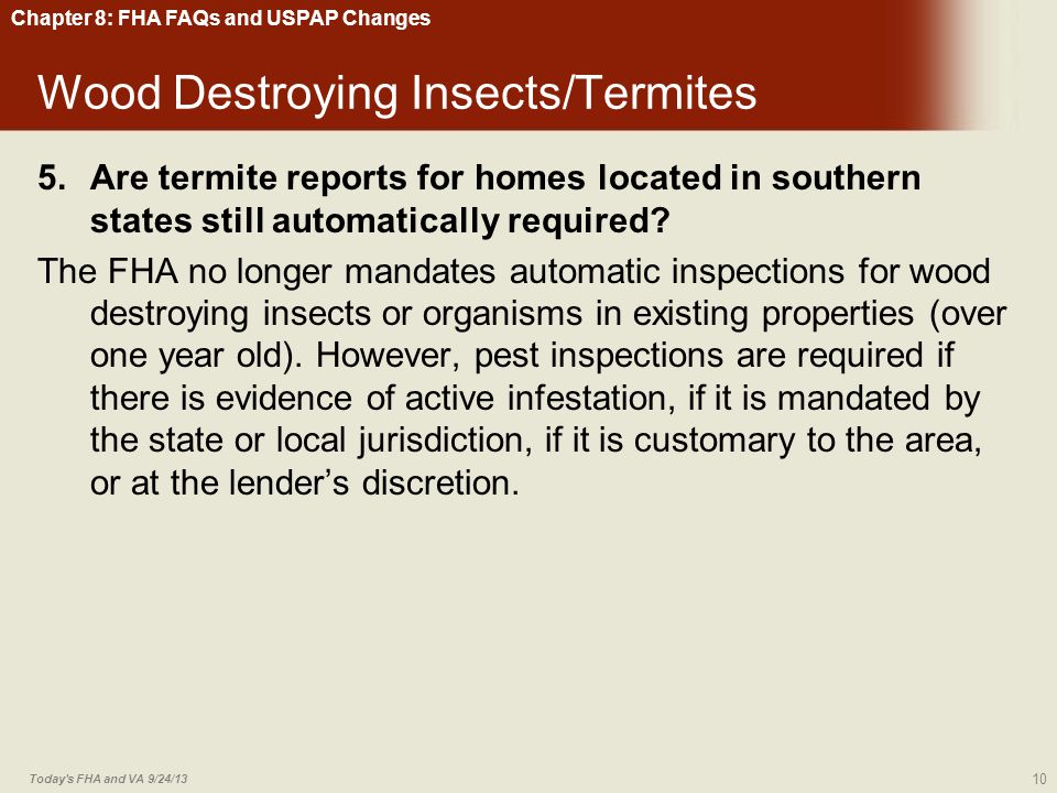 Wood Destroying Insects/Termites