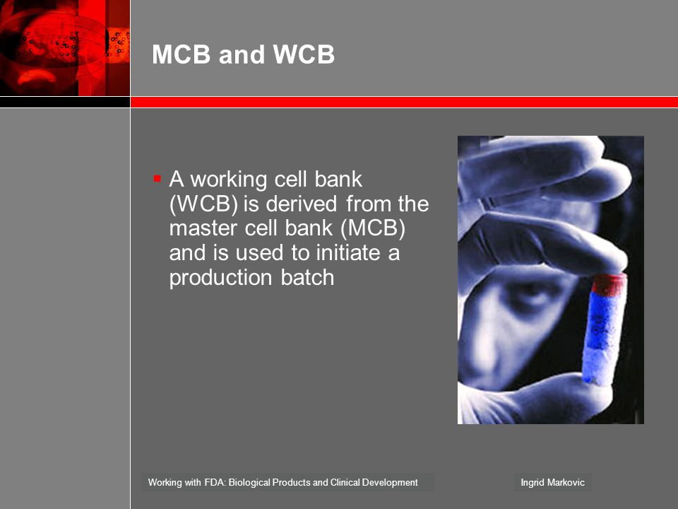 MCB and WCB A working cell bank (WCB) is derived from the master cell bank (MCB) and is used to initiate a production batch.