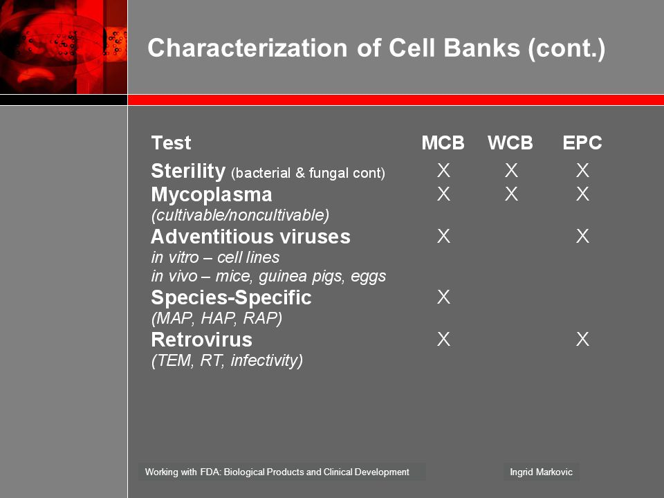 Characterization of Cell Banks (cont.)