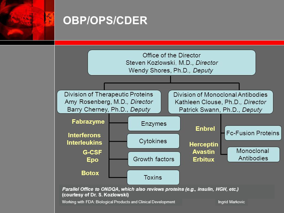 OBP/OPS/CDER Office of the Director Steven Kozlowski, M.D., Director