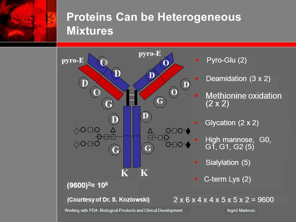 Proteins Can be Heterogeneous Mixtures