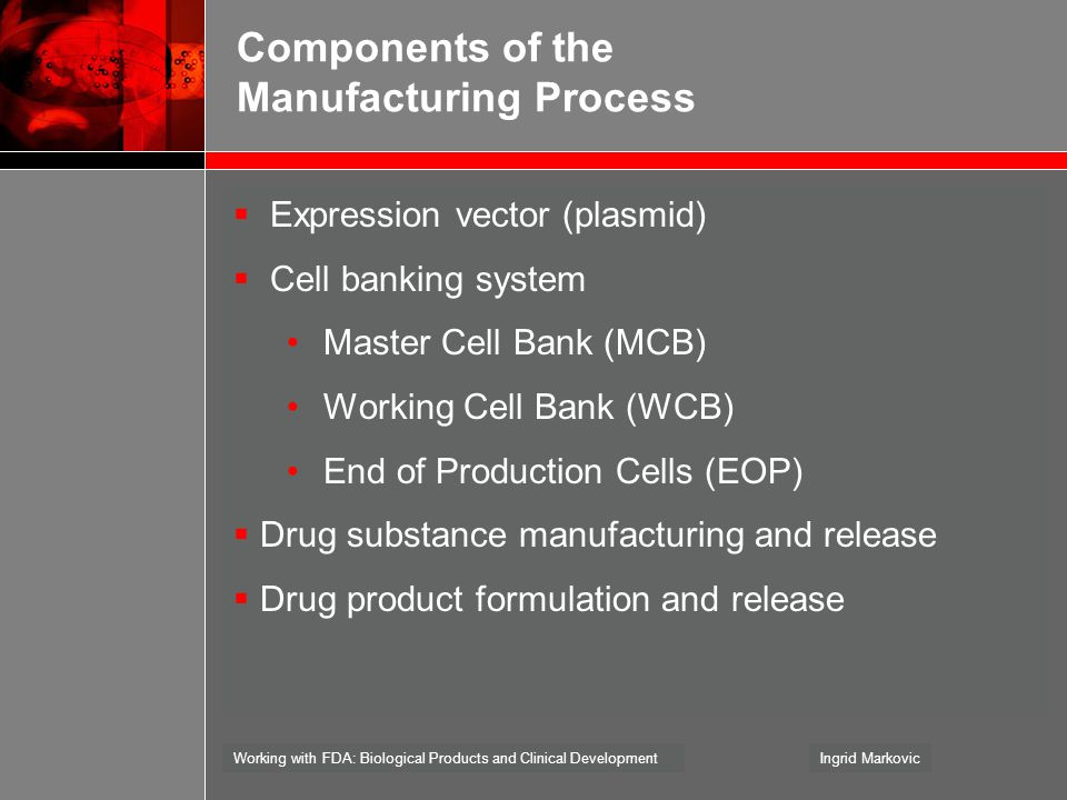 Components of the Manufacturing Process