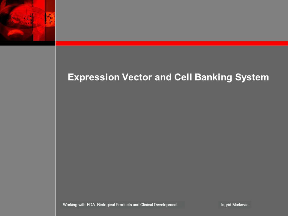 Expression Vector and Cell Banking System