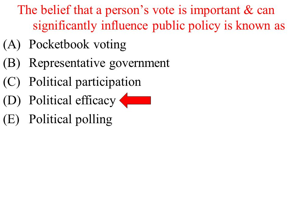 The belief that a person's vote is important & can significantly influence public policy is known as
