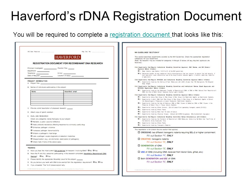 Haverford's rDNA Registration Document