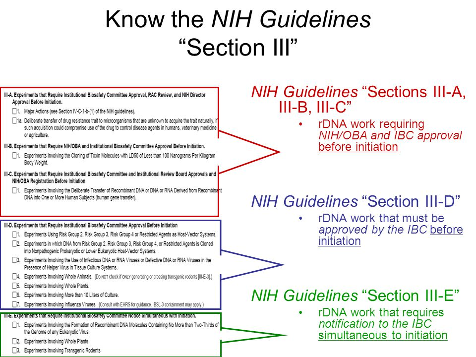 Know the NIH Guidelines Section III
