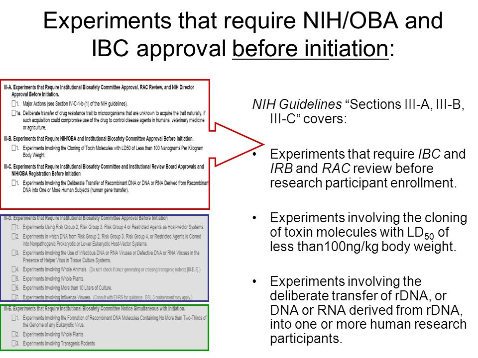 Experiments that require NIH/OBA and IBC approval before initiation: