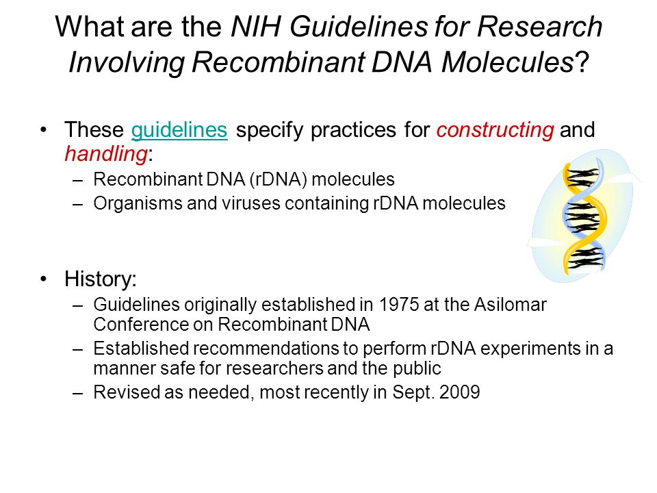 What are the NIH Guidelines for Research Involving Recombinant DNA Molecules