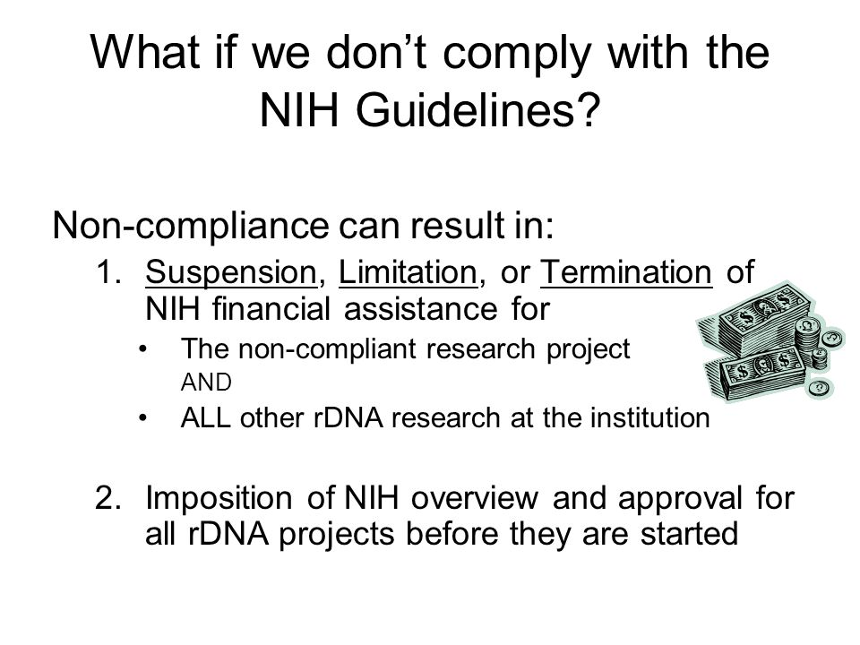 What if we don't comply with the NIH Guidelines