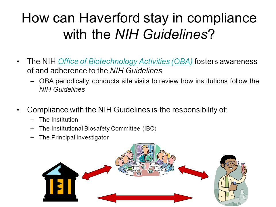 How can Haverford stay in compliance with the NIH Guidelines