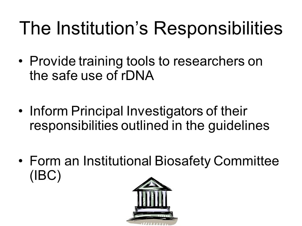 The Institution's Responsibilities