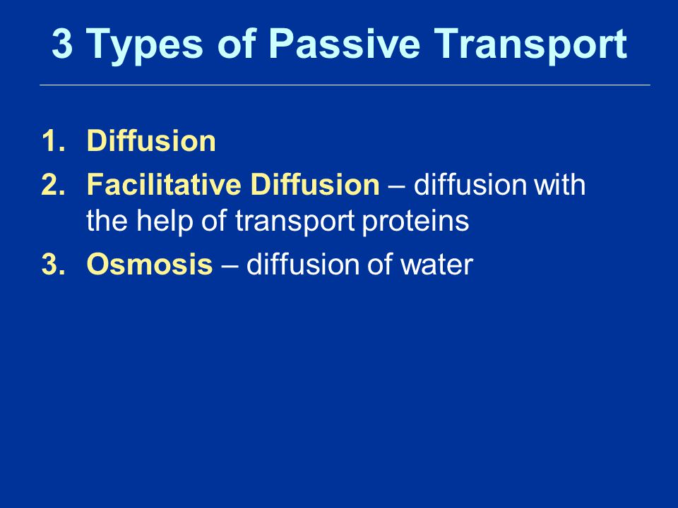 3 Types of Passive Transport