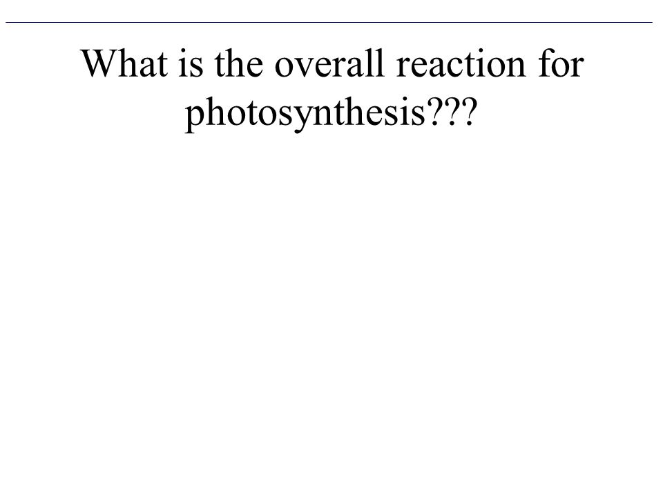 What is the overall reaction for photosynthesis
