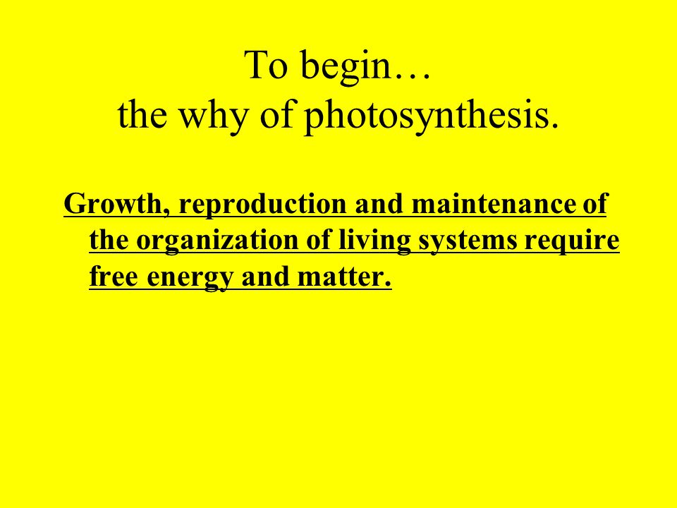 To begin… the why of photosynthesis.