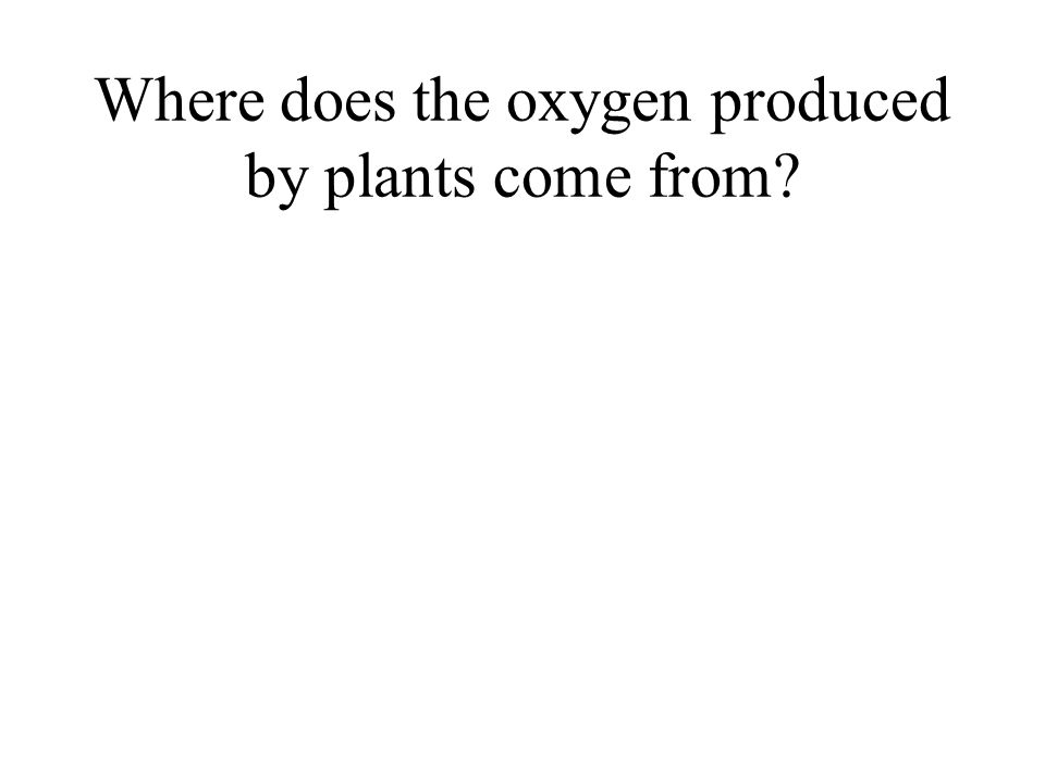 Where does the oxygen produced by plants come from