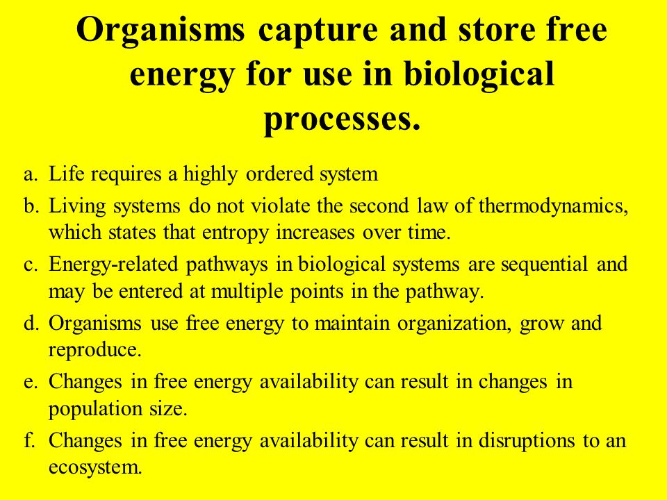 Organisms capture and store free energy for use in biological processes.